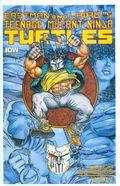 Teenage Mutant Ninja Turtles Color Classics (2014 IDW) 3rd Series 1
