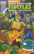 Teenage Mutant Ninja Turtles New Animated Adventures (2013 IDW) 20SUB