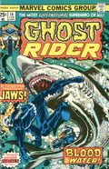 Ghost Rider (1973 1st Series) 16