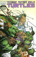 Teenage Mutant Ninja Turtles (2011 IDW) 46RI