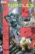 Teenage Mutant Ninja Turtles (2011 IDW) 45C
