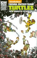 Teenage Mutant Ninja Turtles New Animated Adventures (2013 IDW) 23SUB