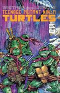 Teenage Mutant Ninja Turtles (1984) 4ERROR-2ND