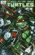 Teenage Mutant Ninja Turtles (2011 IDW) 48B