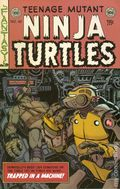 Teenage Mutant Ninja Turtles (2011 IDW) 48SUB