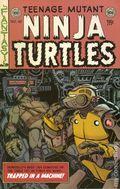 Teenage Mutant Ninja Turtles (2011 IDW) 48SUB