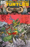 Teenage Mutant Ninja Turtles (2011 IDW) 49