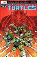 Teenage Mutant Ninja Turtles (2011 IDW) 50C