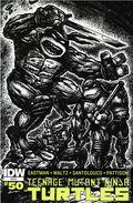 Teenage Mutant Ninja Turtles (2011 IDW) 50RI