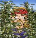 Weed Whisperer TPB (2015 Andrews McMeel) A Doonesbury Book 1-1ST