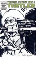 Teenage Mutant Ninja Turtles (2011 IDW) 22RIB