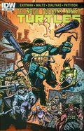 Teenage Mutant Ninja Turtles (2011 IDW) 53SUB