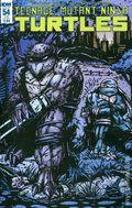 Teenage Mutant Ninja Turtles (2011 IDW) 54SUB