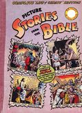 Picture Stories from the Bible (Complete Life of Christ Edition) NNPROMO