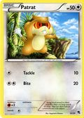 Pokémon Trading Card Game (1998-Present Wizards of the Coast/Pokemon Co.) Single Card #504