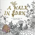 A Walk in Eden SC (2016 Derawn and Quarterly) A Coloring Book by Anders Nilsen 1-1ST