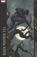 Black Panther (2016) 11C