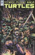 Teenage Mutant Ninja Turtles (2011 IDW) 69SUB