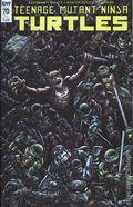 Teenage Mutant Ninja Turtles (2011 IDW) 70SUB