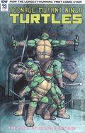 Teenage Mutant Ninja Turtles (2011 IDW) 73RI