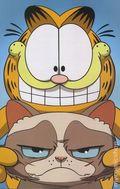 Grumpy Cat Garfield (2017 Dynamite) 2F