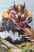 Wolverine Poster (1991 Marvel) By Glynis Oliver ITEM#1