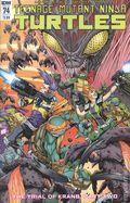 Teenage Mutant Ninja Turtles (2011 IDW) 74A