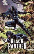 Black Panther Panther's Quest TPB (2017 Marvel) 1-1ST