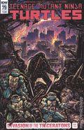 Teenage Mutant Ninja Turtles (2011 IDW) 79B