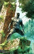 Black Panther (2017 6th Series) 170D