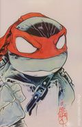Teenage Mutant Ninja Turtles (2011 IDW) 11SKETCH