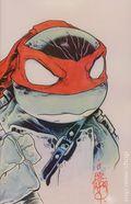 Teenage Mutant Ninja Turtles (2011 IDW) 11SKETCH