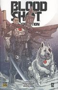 Bloodshot Salvation (2017 Valiant) 12D
