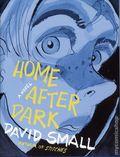 Home After Dark HC (2018 Liveright) 1-1ST
