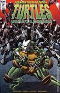 Teenage Mutant Ninja Turtles Urban Legends (2018 IDW) 7A