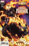 Infinity Warps Ghost Panther (2018 Marvel) 1A