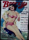 Breezy Stories and Young's Magazine (1915-1949 C.H. Young) Pulp Vol. 48 #2