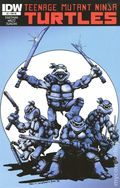 Teenage Mutant Ninja Turtles (2011 IDW) 2RE.JETPACK