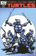 Teenage Mutant Ninja Turtles (2011 IDW) 2RE.JETPACK