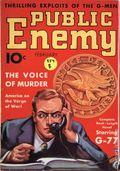 Public Enemy (1935-1936 Dell) Pulp Vol. 1 #2