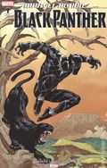 Marvel Action Black Panther (2018 IDW) 1RIC