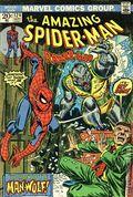 Amazing Spider-Man (1963 1st Series) Mark Jewelers 124MJ