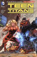 Teen Titans TPB (2012-2015 DC Comics The New 52) 5-REP