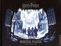 Harry Potter Magical Places HC (2019 Insight Kids) A Paper Scene Book 1-1ST