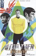 Star Trek Discovery Aftermath (2019 IDW) 1RIB