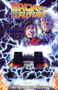 Back to the Future The Heavy Collection TPB (2018 IDW) 1-REP