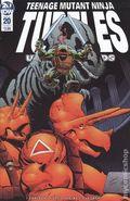 Teenage Mutant Ninja Turtles Urban Legends (2018 IDW) 20B