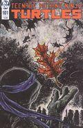 Teenage Mutant Ninja Turtles (2011 IDW) 101B