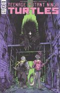 Teenage Mutant Ninja Turtles (2011 IDW) 102A