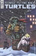 Teenage Mutant Ninja Turtles (2011 IDW) 102B
